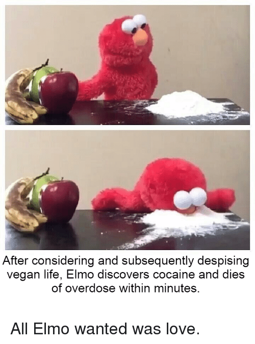 After Considering and Subsequently Despising Vegan Life Elmo