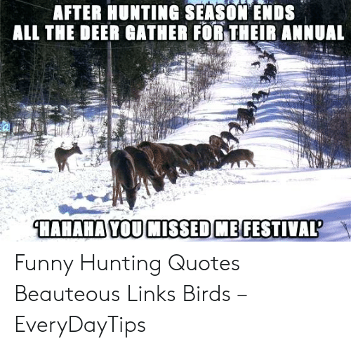 After Hunting Season Ends All The Deer Gather For Their Annual Hahaha You Missed Me Festival Funny Hunting Quotes Beauteous Links Birds Everydaytips Deer Meme On Me Me