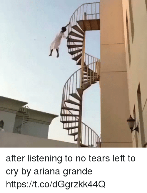 Ariana Grande, Girl Memes, and Cry: after listening to no tears left to cry by ariana grande https://t.co/dGgrzkk44Q