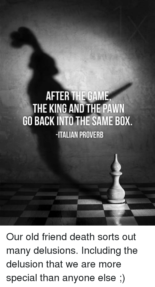 Memes, The Game, and Death: AFTER THE GAME  THE KING ANDTHE PAWN  GO BACK INTO THE SAME BOX  ITALIAN PROVERB Our old friend death sorts out many delusions.  Including the delusion that we are more special than anyone else ;)
