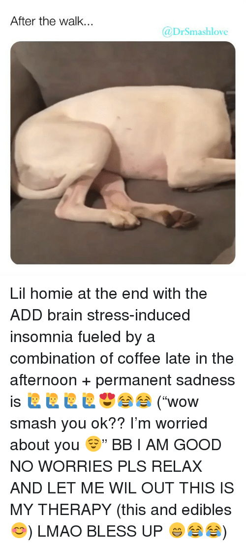 "Bless Up, Homie, and Lmao: After the walk.  @DrSmashlove Lil homie at the end with the ADD brain stress-induced insomnia fueled by a combination of coffee late in the afternoon + permanent sadness is 🙋‍♂️🙋‍♂️🙋‍♂️🙋‍♂️😍😂😂 (""wow smash you ok?? I'm worried about you 😌"" BB I AM GOOD NO WORRIES PLS RELAX AND LET ME WIL OUT THIS IS MY THERAPY (this and edibles 😊) LMAO BLESS UP 😁😂😂)"