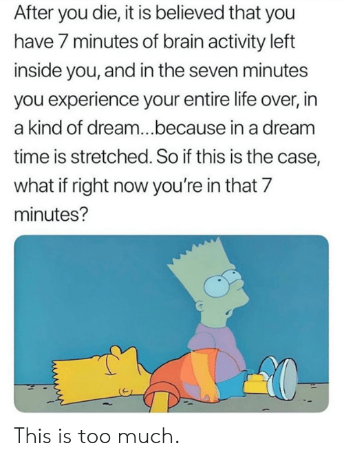 A Dream, Dank, and Life: After you die, it is believed that you  have 7 minutes of brain activity left  inside you, and in the seven minutes  you experience your entire life over, in  a kind of dream...because in a dream  time is stretched. So if this is the case,  what if right now you're in that 7  minutes? This is too much.