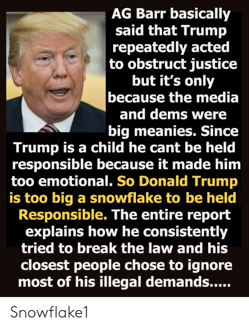 Donald Trump, Politics, and Break: AG Barr basically  said that Trump  repeatedly acted  to obstruct justice  but it's only  because the media  and dems were  big meanies. Since  Trump is a child he cant be held  responsible because it made him  too emotional. So Donald Trump  is too big a snowflake to be held  Responsible. The entire report  explains how he consistently  tried to break the law and his  closest people chose to ignore Snowflake1