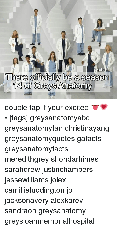 Agafac There Officially Be a Season 14 of Greys Anatomy Double Tap ...