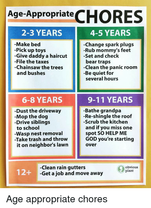 9/11, Funny, and God: Age-AppropriateCHORES  2-3 YEARS  4-5 YEARS  -Make bed  -Pick up toys  -Give daddy a haircut  -File the taxes  -Chainsaw the trees  and bushes  -Change spark plugs  -Rub mommy's feet  -Set and check  bear traps  -Clean the panic room  -Be quiet for  several hours  6-8 YEARS  9-11 YEARS  -Dust the driveway  -Mop the dog  -Drive siblings  to school  -Wasp nest removal  -Take trash and throw  it on neighbor's lawn  -Bathe grandpa  -Re-shingle the roof  -Scrub the kitchen  and if you miss one  spot SO HELP ME  GOD you're starting  over  -Clean rain gutters  -Get a job and move away  Obvious  12+  plant