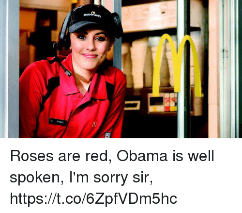 Obama, Sorry, and Girl Memes: agen Roses are red, Obama is well spoken, I'm sorry sir, https://t.co/6ZpfVDm5hc
