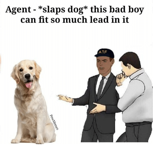 Agent - *Slaps Dog* This Bad Boy Can Fit So Much Lead in ...