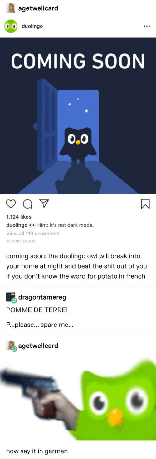 Shit, Soon..., and Say It: agetwellcard  .0 duolingo  COMING SOON  0.0  1,124 likes  duolingo Hint: it's not dark mode.  View all 119 comments  29 MINUTES AGO  coming soon: the duolingo owl will break into  your home at night and beat the shit out of you  if you don't know the word for potato in french  dragontamereg  POMME DE TERRE!  P...please... spare me...  agetwellcard  now say it in german