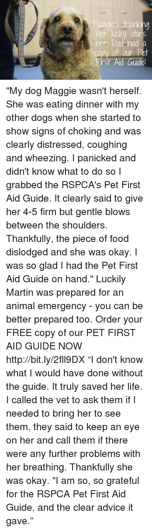 PET FIRST AID GUIDE RSPCA