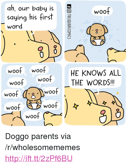 """Parents, Http, and Word: ah, our baby is  WOo  saying his fir  word  woof woof  woof woof  HE KNOWS ALL  THE WORDSI!  woof  Woo  woo  woof  Woo <p>Doggo parents via /r/wholesomememes <a href=""""http://ift.tt/2zPf6BU"""">http://ift.tt/2zPf6BU</a></p>"""