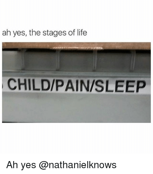 Life, Dank Memes, and Pain: ah yes, the stages of life  CHILD/PAIN/SLEEP Ah yes @nathanielknows