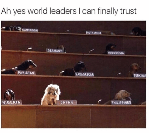 Africa, Dank, and Germany: Ah yes world leaders I can finally trust  CAMEROON  OUTH AFRICA  GERMANY  INDONESIA  PAKISTAN  MADAGASCAR  BURKINA  -JAPAN  PHILIPPINES  NIGERIA