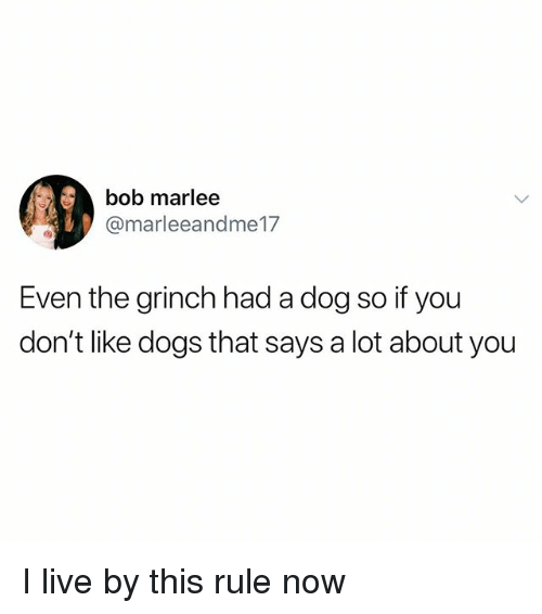 Dogs, The Grinch, and Memes: Ai,  bob marlee  @marleeandme17  Even the grinch had a dog so if you  don't like dogs that says a lot about you I live by this rule now