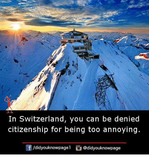 Memes, Switzerland, and Annoying: ai  In Switzerland, you can be denied  citizenship for being too annoying.  齢  /didyouknowpagel