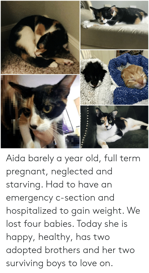 Aida Barely a Year Old Full Term Pregnant Neglected and