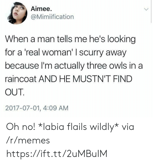 Memes, A Real Woman, and Looking: Aimee  @Mimiification  When a man tells me he's looking  for a 'real woman' I scurry away  because I'm actually three owls in a  raincoat AND HE MUSTN'T FIND  OUT  2017-07-01, 4:09 AM Oh no! *labia flails wildly* via /r/memes https://ift.tt/2uMBuIM