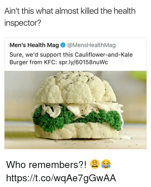 Kfc, Memes, and Kale: Ain't this what almost killed the health  inspector?  Men's Health Mag @MensHealthMag  Sure, we'd support this Cauliflower-and-Kale  Burger from KFC: spr.ly/60158nuWc Who remembers?! 😩😂 https://t.co/wqAe7gGwAA