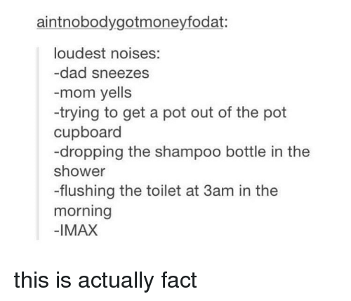 Dad, Imax, and Shower: aintnobodygotmoneyfodat:  loudest noises:  -dad sneezes  -mom yells  -trying to get a pot out of the pot  cupboard  -dropping the shampoo bottle in the  shower  -flushing the toilet at 3am in the  morning  -IMAX this is actually fact