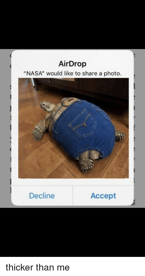 """Nasa, Reddit, and Photo: AirDrop  """"NASA"""" would like to share a photo.  Decline  Accept"""