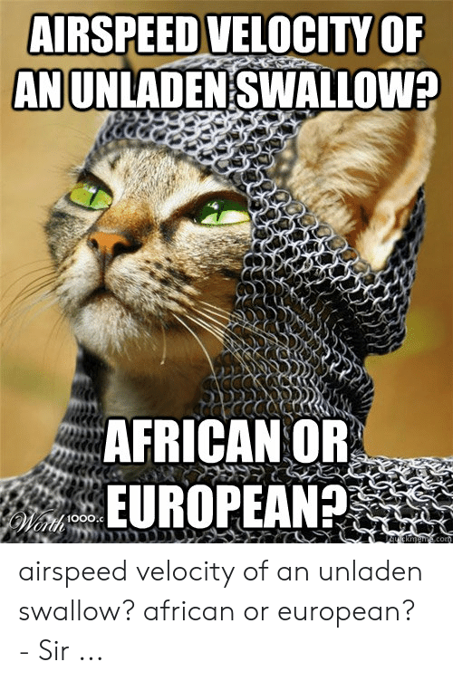 https://pics.me.me/airspeed-velocityof-an-unladen-swallow-african-or-european-airspeed-velocity-52761732.png