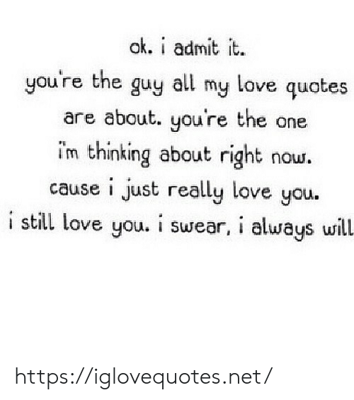 Love, Quotes, and Net: ak. i admit it.  you're the guy all my love quotes  are about. you're the one  im thinking about right  cause i just really love you.  i still love you. i swear, i always will.  now. https://iglovequotes.net/