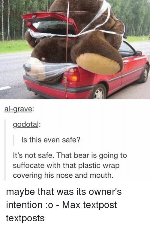 Memes, Bear, and 🤖: al-grave:  godotal:  Is this even safe?  It's not safe. That bear is going to  suffocate with that plastic wrap  covering his nose and mouth maybe that was its owner's intention :o - Max textpost textposts
