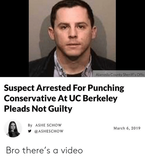 Alameda County Sheriff's Offic Suspect Arrested for Punching