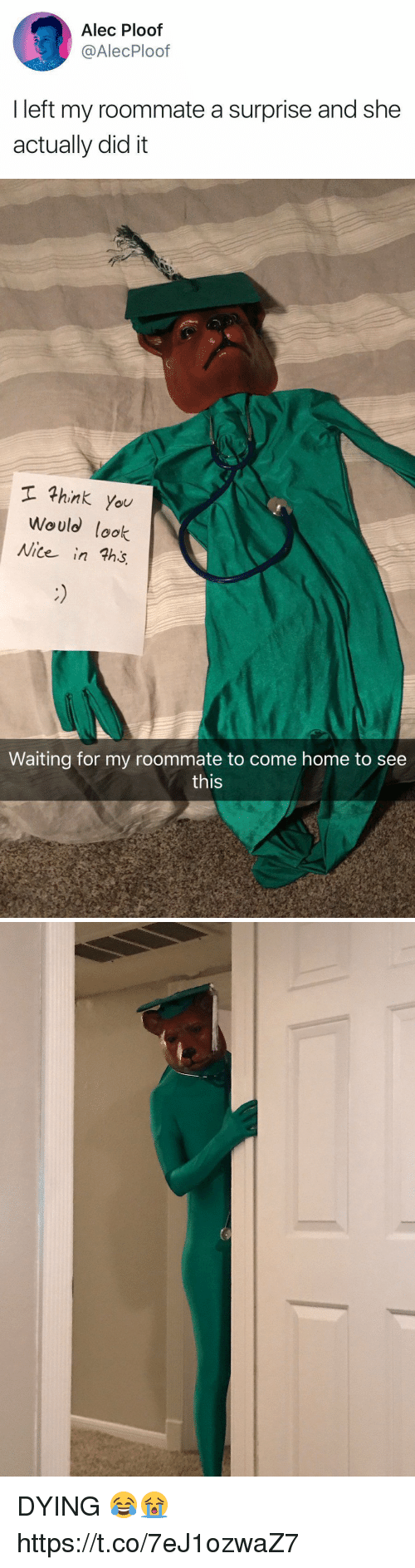 Roommate, Home, and Girl Memes: Alec Ploof  @AlecPloof  I left my roommate a surprise and she  actually did it   hink you  Would lok  Nite in ths  Waiting for my roommate to come home to see  this DYING 😂😭 https://t.co/7eJ1ozwaZ7