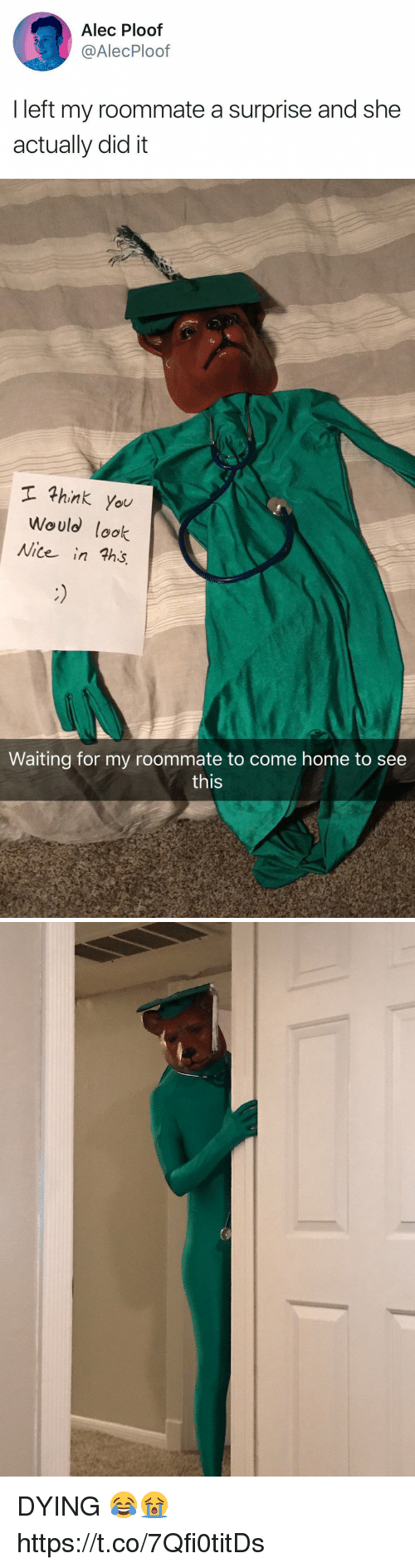 Roommate, Home, and Girl Memes: Alec Ploof  @AlecPloof  I left my roommate a surprise and she  actually did it   hink you  Would lok  Nite in ths  Waiting for my roommate to come home to see  this DYING 😂😭 https://t.co/7Qfi0titDs