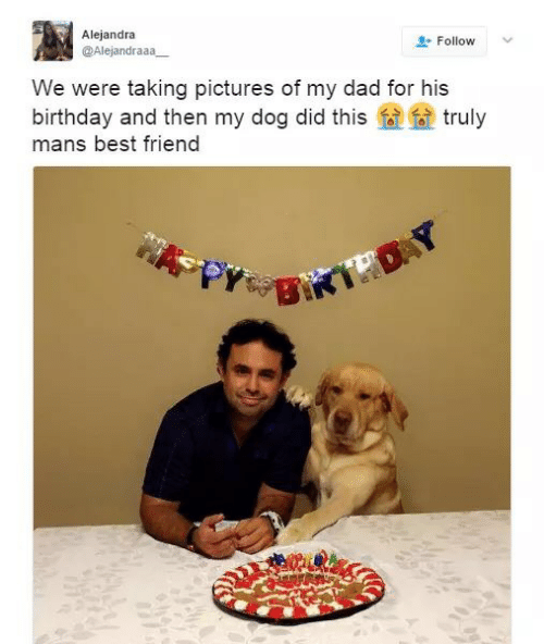 Best Friend, Birthday, and Dad: Alejandra  @Alejandraaa  Follow  We were taking pictures of my dad for his  birthday and then my dog did this  mans best friend  truly  BIKTHOAY