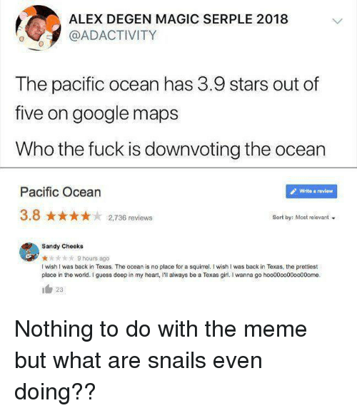 Google, Meme, and Sandy Cheeks: ALEX DEGEN MAGIC SERPLE 2018  @ADACTIVITY  The pacific ocean has 3.9 stars out of  five on google maps  Who the fuck is downvoting the ocean  Pacific Ocean  Write a review  3.8 2,736 reviews  Sort by: Most relevant  Sandy Cheeks  ★☆★☆★ 9hours ago  I wish I was back in Texas. The ocean is no place for a squirrel. I wish I was back in Texas, the prettiest  place in the world. I guess deep in my heart, I'lI always be a Texas girl. I wanna go hoo0000000000ome.  23 Nothing to do with the meme but what are snails even doing??