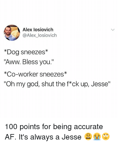 "Af, Anaconda, and Aww: Alex losiovich  @Alex_losiovich  *Dog sneezes*  ""Aww. Bless you.""  *Co-worker sneezes*  ""Oh my god, shut the f*ck up, Jesse"" 100 points for being accurate AF. It's always a Jesse 😩😭🙄"