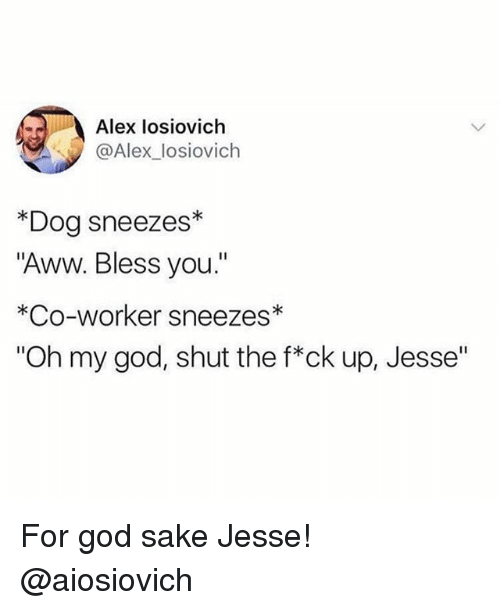 "Aww, Funny, and God: Alex losiovich  @Alex_losiovich  *Dog sneezes*  Aww. Bless you.""  *Co-worker sneezes*  ""Oh my god, shut the f*ck up, Jesse"" For god sake Jesse! @aiosiovich"