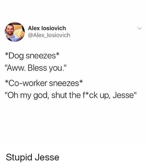 "Aww, Funny, and God: Alex losiovich  @Alex_losiovich  *Dog sneezes*  ""Aww. Bless you.""  *Co-worker sneezes*  ""Oh my god, shut the f*ck up, Jesse"" Stupid Jesse"