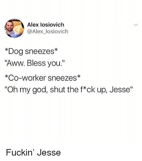 "Aww, God, and Oh My God: Alex losiovich  @Alex_losiovich  *Dog sneezes*  ""Aww. Bless you.""  *Co-worker sneezes*  ""Oh my god, shut the f*ck up, Jesse""  I1 Fuckin' Jesse"