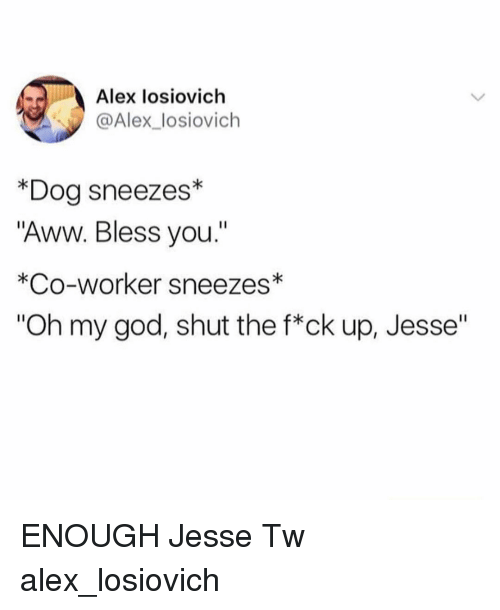 "Aww, God, and Memes: Alex losiovich  @Alex_losiovich  *Dog sneezes*  ""Aww. Bless you.""  *Co-worker sneezes*  ""Oh my god, shut the f*ck up, Jesse"" ENOUGH Jesse Tw alex_losiovich"