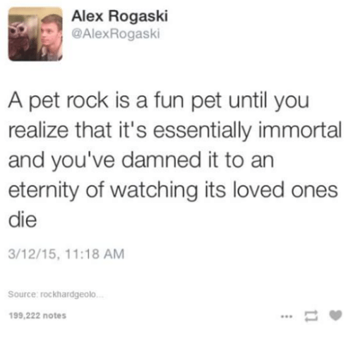 Dank, Eternity, and 🤖: Alex Rogaski  @Alex Rogaski  A pet rock is a fun pet until you  realize that it's essentially immortal  and you've damned it to an  eternity of watching its loved ones  die  3/12/15, 11:18 AM  Source: rockhardgeolo.  199,222 notes