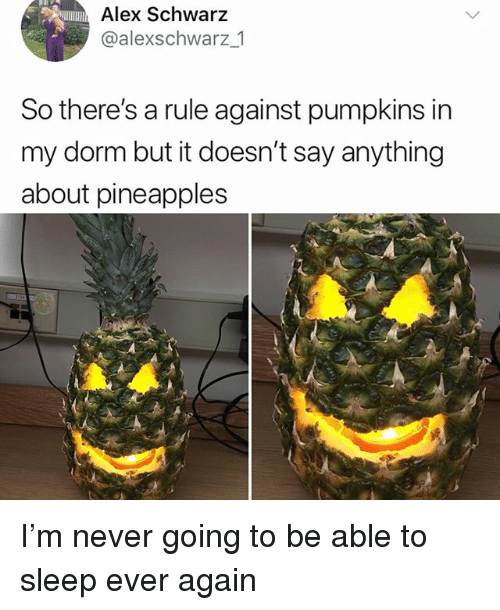 Memes, Never, and Say Anything...: Alex Schwarz  @alexschwarz_1  So there's a rule against pumpkins in  my dorm but it doesn't say anything  about pineapples I'm never going to be able to sleep ever again