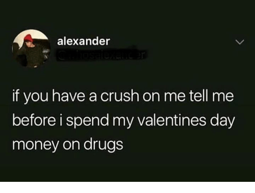 Crush, Drugs, and Memes: alexander  if you have a crush on me tell me  before i spend my valentines day  money on drugs