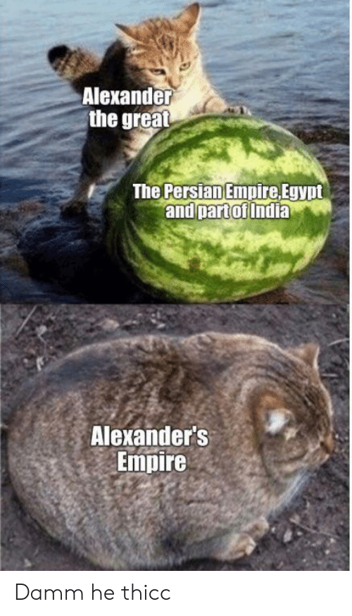 Empire, India, and Persian: Alexander  the great  The Persian Empire Egypt  and part of India  Alexander's  Empire Damm he thicc