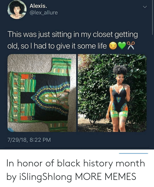 Black History Month, Dank, and Life: Alexis  @lex_allure  This was just sitting in my closet getting  old, so I had to give it some life  7/29/18, 8:22 PM In honor of black history month by iSlingShlong MORE MEMES