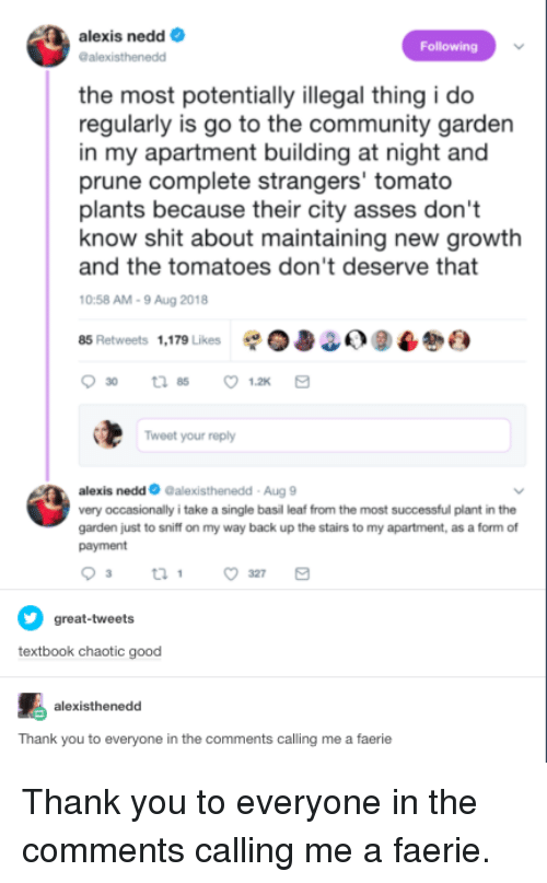 Community, Shit, and Thank You: alexis nedd  alexisthenedd  Following  the most potentially illegal thing i do  regularly is go to the community garden  in my apartment building at night and  prune complete strangers' tomato  plants because their city asses don't  and the tomatoes don't deserve that  0:58 AM-9 Aug 2018  85 Retweets 1,179 Likes 0338) 9  know shit about maintaining new growtlh  Tweet your reply  alexis nedd Galexisthenedd-Aug 9  very occasionally i take a single basil leaf from the most successful plant in the  garden just to sniff on my way back up the stairs to my apartment, as a form of  payment  great-tweets  textbook chaotic good  alexisthenedd  Thank you to everyone in the comments calling me a faerie Thank you to everyone in the comments calling me a faerie.