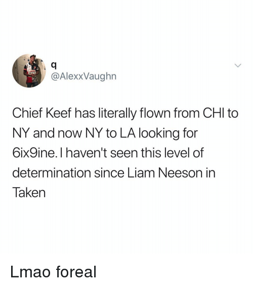 Chief Keef, Funny, and Liam Neeson: @AlexxVaughn  Chief Keef has literally flown from CHI to  NY and now NY to LA looking for  6ix9ine.I haven't seen this level of  determination since Liam Neeson in  Taken Lmao foreal