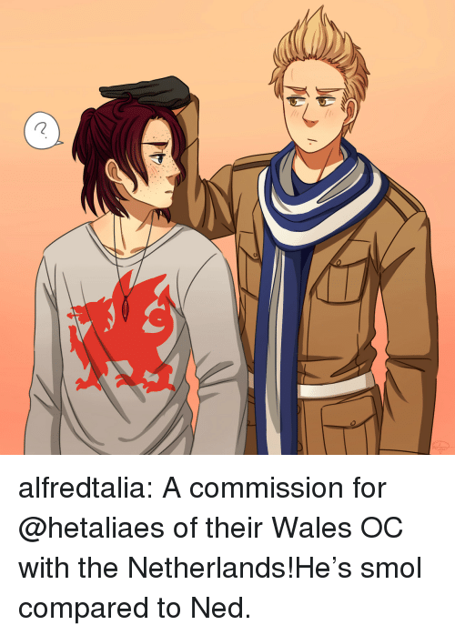 Target, Tumblr, and Blog: alfredtalia:  A commission for @hetaliaes of their Wales OC with the Netherlands!He's smol compared to Ned.