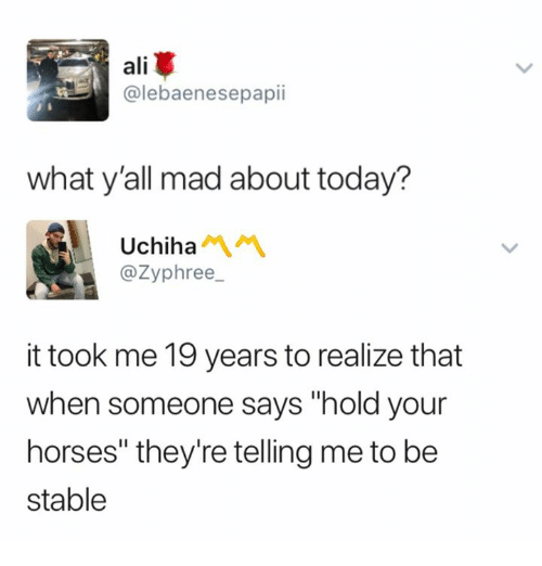 """Ali, Horses, and Today: ali  @lebaenesepapii  what y'all mad about today?  Uchiha1  @Zyphree  it took me 19 years to realize that  when someone says """"hold your  horses"""" they're telling me to be  stable"""