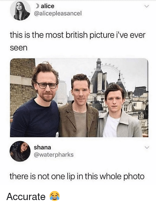 Memes, British, and 🤖: alice  @alicepleasancel  this is the most british picture i've ever  seen  shana  @waterpharks  there is not one lip in this whole photo Accurate 😂