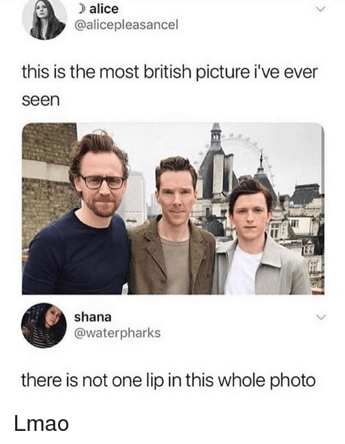 Lmao, Memes, and British: alice  @alicepleasancel  this is the most british picture i've ever  seen  shana  @waterpharks  there is not one lip in this whole photo Lmao
