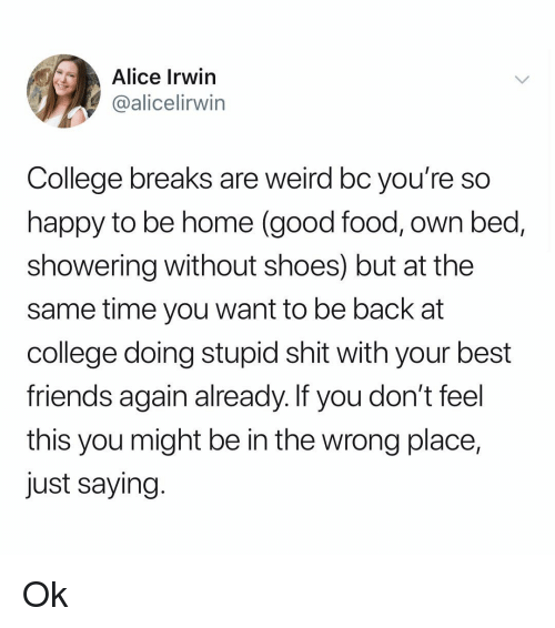 College, Food, and Friends: Alice Irwin  @alicelirwin  College breaks are weird bc you're so  happy to be home (good food, own bed,  showering without shoes) but at the  same time you want to be back at  college doing stupid shit with your best  friends again already. If you don't feel  this you might be in the wrong place,  just saying Ok