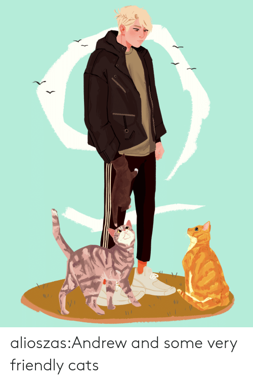 Cats, Target, and Tumblr: alioszas:Andrew and some very friendly cats