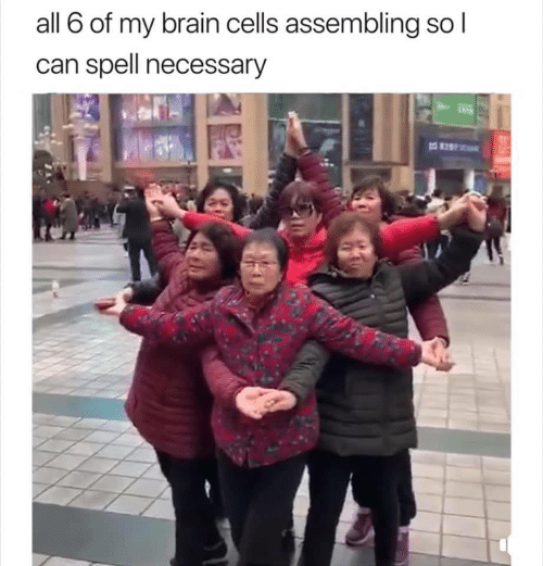 Brain, Can, and All: all 6 of my brain cells assembling so  can spell necessary